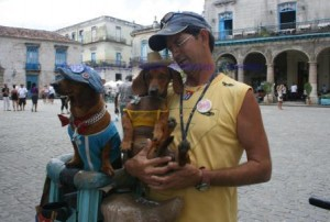 Havana showdogs