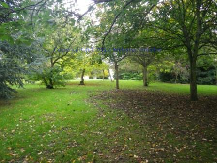 Danson Park London Dog Blog