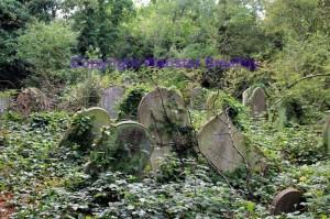nunhead-cemetery-aug-2014-14