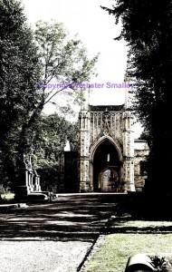 nunhead-cemetery-aug-2014-5-b