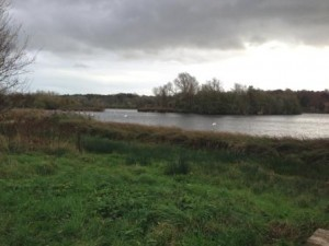 Whitlingham Country Park  (3)